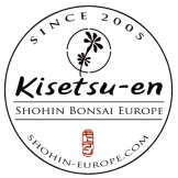 Shohin Bonsai Europe – Morten Albek